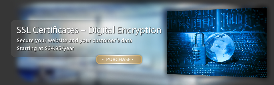 Purchase an SSL Certificate to Protect Your Website Today!